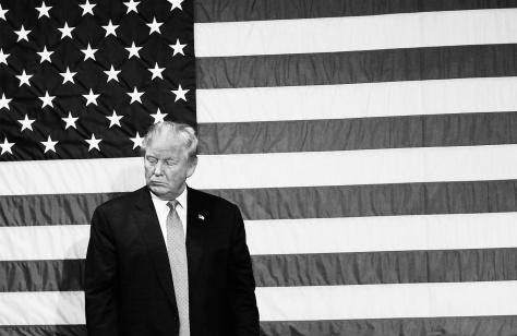 donald trump us flag